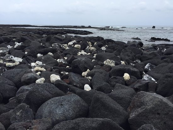 Honaunau, Hawái: lava rock on the shore