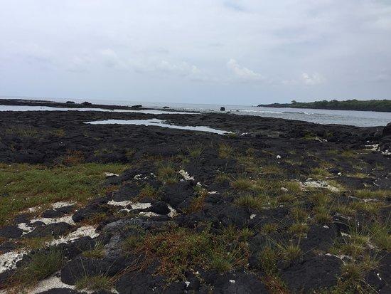 Honaunau, Hawái: on the shoreline