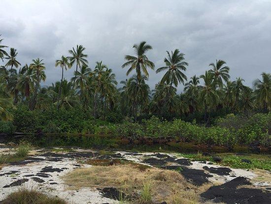 Honaunau, Hawái: park grounds