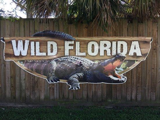 Kenansville, FL: photo3.jpg