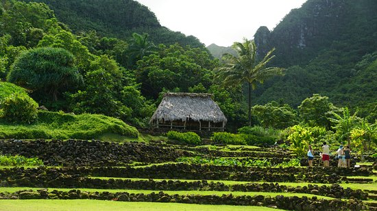 Terraces at Limahuli - Picture of Limahuli Garden and Preserve ...