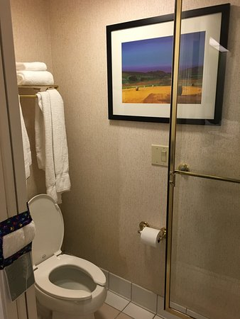 Urbandale, IA: Bathroom area with toilet, shower glass door and pleasant artwork