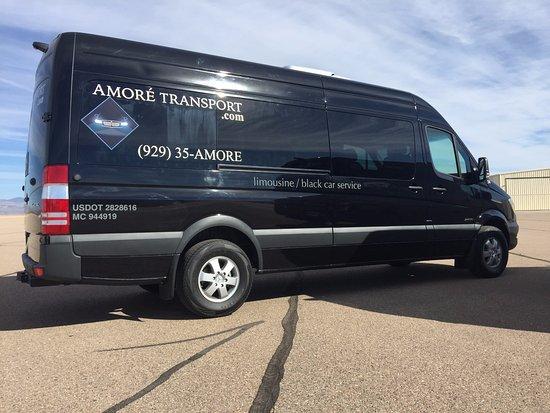 Amore Transport