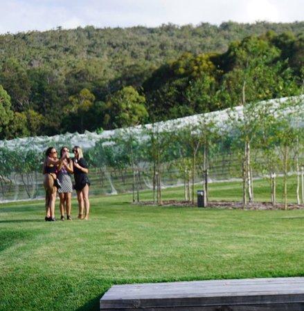 Mittagong, Avustralya: Lots of photo opportunities around