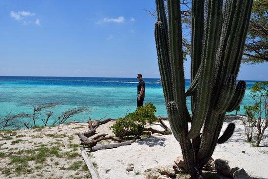 Savaneta, Aruba: Mangel Halto!