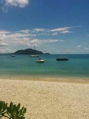 Fitzroy Island Resort: IMG_20161014_123937-01_large.jpg