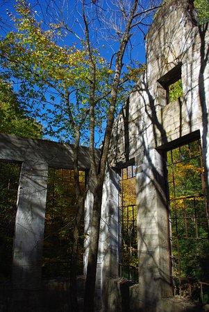 Chelsea, Канада: Carbide Willson Ruins