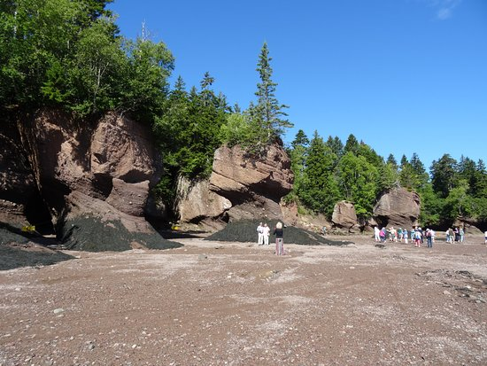 Hopewell Cape, Canadá: Very cool place