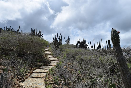 Santa Cruz, Aruba: Trail to the old Mining area