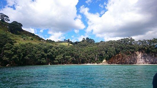 Whitianga, Nueva Zelanda: DSC_0197_large.jpg