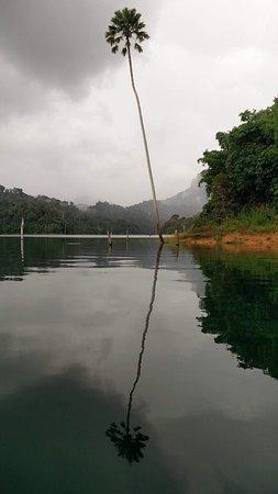 Khao Sok National Park: photo0.jpg