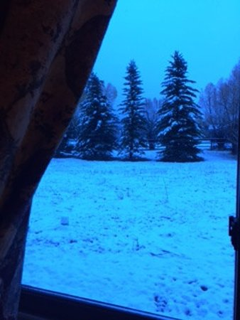 Sassy Moose Inn: View out the River Room bedroom window the morning it snowed