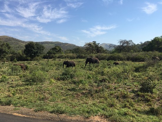 Hluhluwe, África do Sul: photo3.jpg