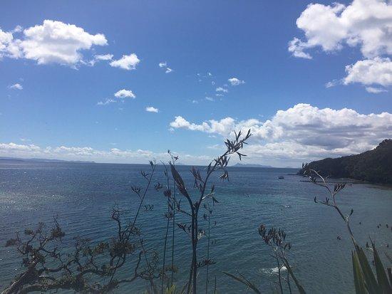 Warkworth, Nueva Zelanda: photo1.jpg