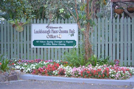 Landsborough, أستراليا: Garden at the office