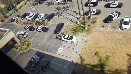 Norwalk, Califórnia: Police Activity - Bomb Threat