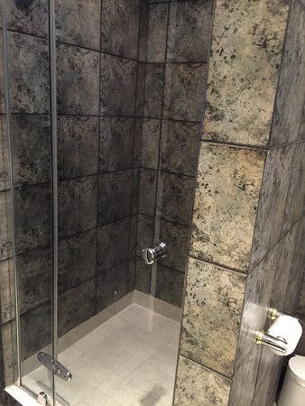 Southern Sun Katherine Street Sandton: Superior room Bathroom