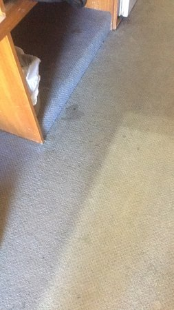 Raymond Terrace, Australia: Filthy floor
