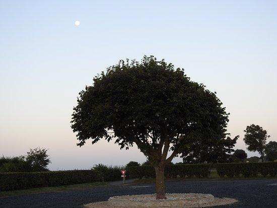 Foto de Longues-sur-Mer