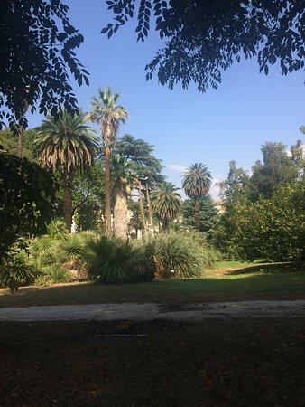 Orto Botanico di Roma: photo7.jpg