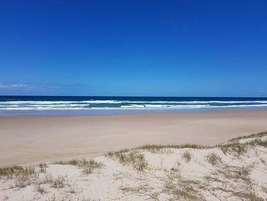 Peregian Beach, Australia: View from the back yard