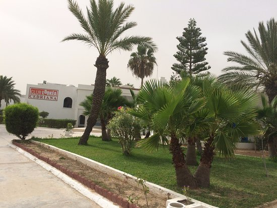 Hotel Cedriana: vue de l'extérieur