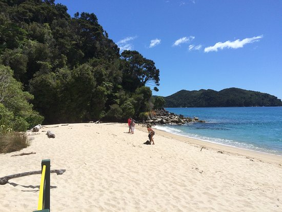 Abel Tasman National Park, Nueva Zelanda: Wilsons