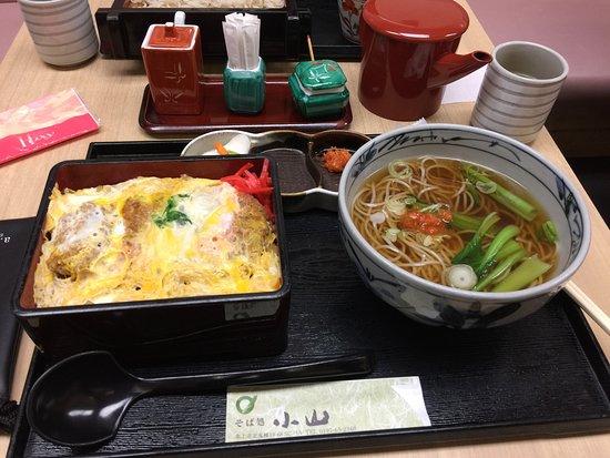Kitakami, Japan: photo1.jpg