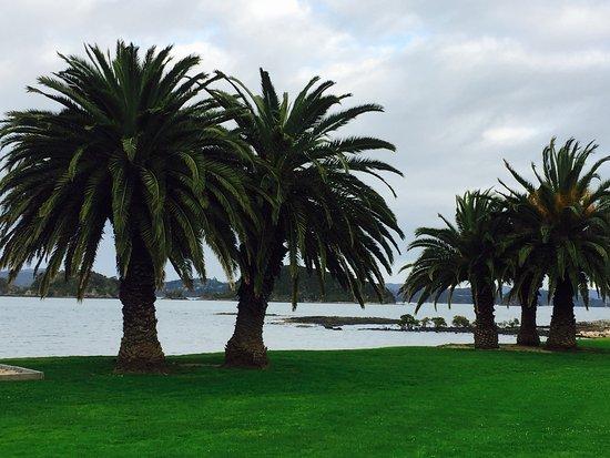 Waitangi, Nuova Zelanda: photo3.jpg
