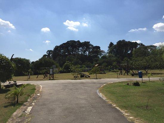 Teresa Maia Park