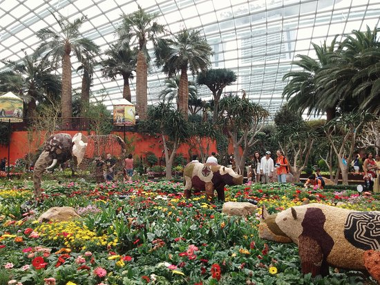 gardens by the bay tribal tempo exhibition in flower dome
