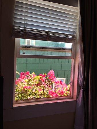 Paia Inn: photo9.jpg