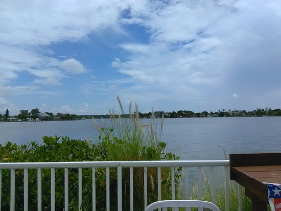 Redington Shores, FL: View from the bar at the Seebreeze