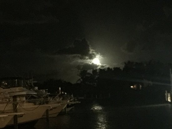 Lighthouse Point, FL: photo6.jpg