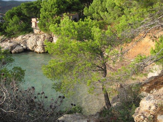 Costa d'en Blanes, Ισπανία: Aussicht beim Spazieren auf den Felsen