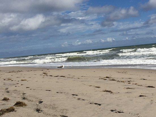 Highland Beach, Floryda: photo0.jpg