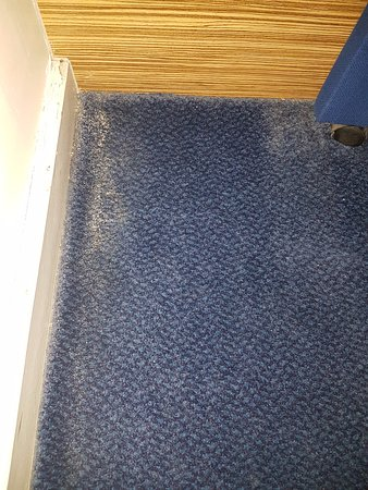 Travelodge Chester Central : Carpet in corner by bed next to shower room filthy and stinking