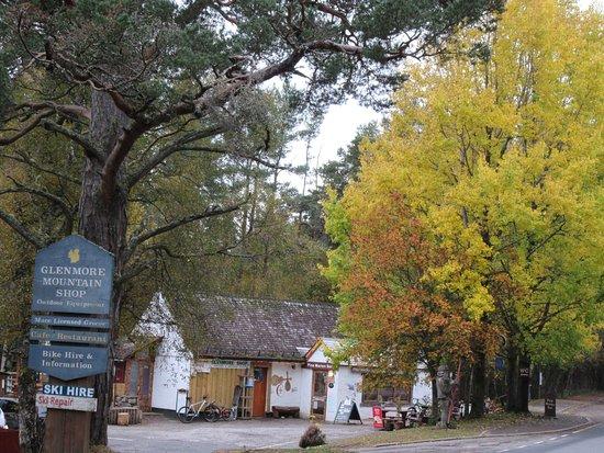 Pine Marten Bar and Scran
