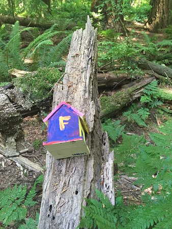 Surrey, Canada : Art in the woods