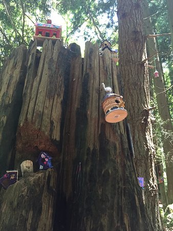 Surrey, Canada : Art in the woods painted by kids, it makes the walk much more enjoyable :)