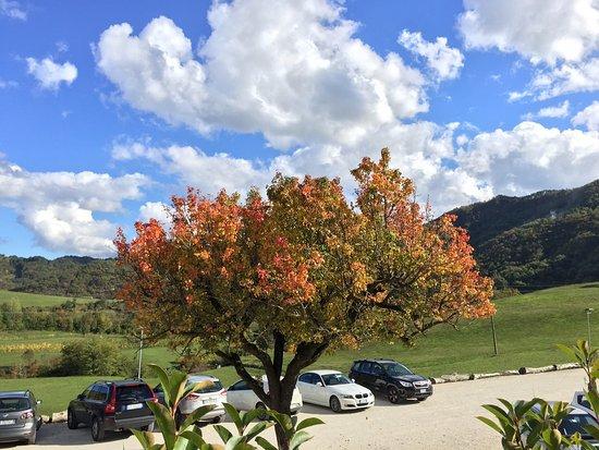 Marradi, อิตาลี: photo2.jpg
