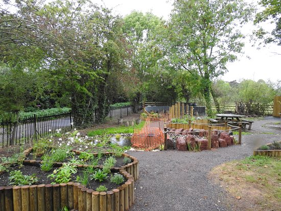 Topsham, UK: The recently landscaped RSPB gardens