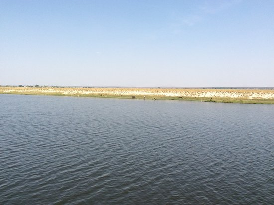 Kasane, Botswana: photo5.jpg