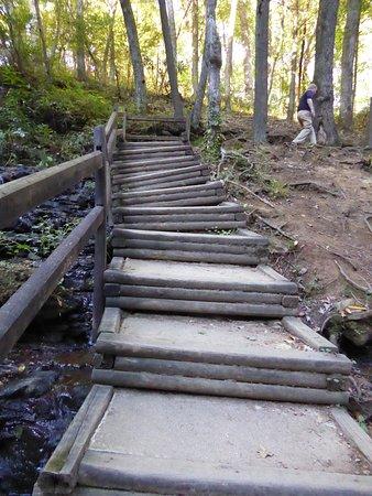 Blairsville, GA: Straight stairs lol