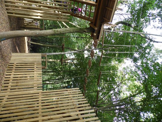 Chessington, UK: Within the forest