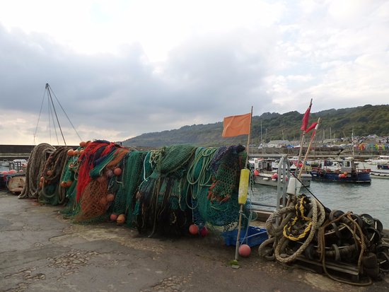 Lyme Regis, UK: Nets by the Cobb