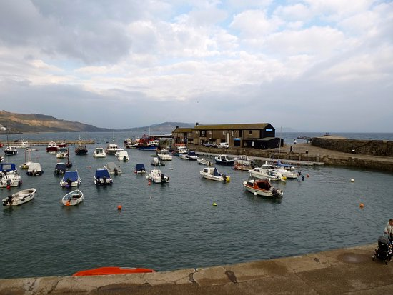 Lyme Regis, UK: The Cobb