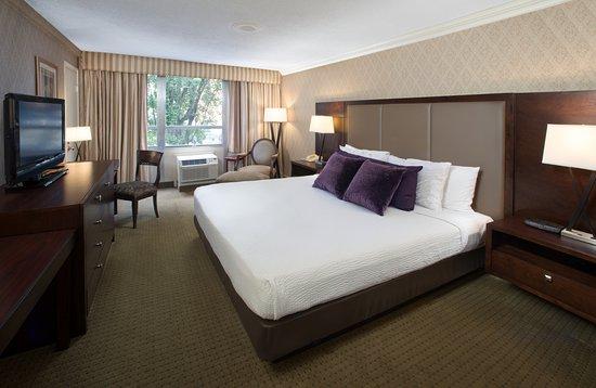 Bethesda Court Hotel: King Room