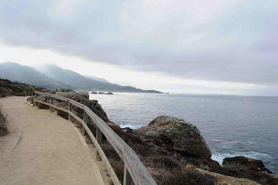 Point Lobos State Reserve: a view of the central coast from the Sea Lion Point trail