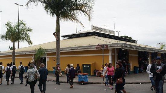 Camelodromo